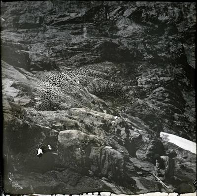Mountain scene, Cleddau Valley