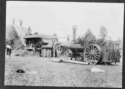 Unidentified Threshing Mill and Traction Engine