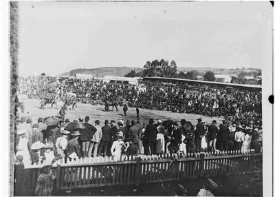 Agricultural and Pastoral Show, Arun Street Showgrounds Oamaru