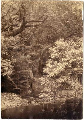 Horse Range Gorge.