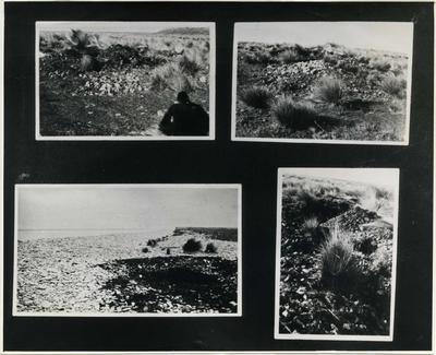 Waitaki River mouth site.