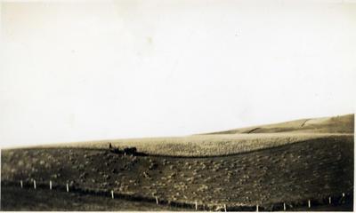 Farmland, location unidentified.