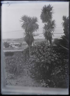 Oamaru Harbour View facing east
