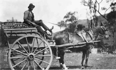 Jamieson?, Baker, 1920. Horse and cart.; 883P