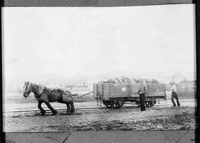 Gasworks.  Horse drawn railwagon