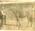 The race horse Warstep. Waitaki Boys' High School album of Ralph Garland
