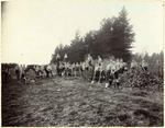 Waitaki Boys 'High School Agricultural class