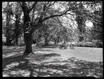Women and children in Oamaru Public Gardens