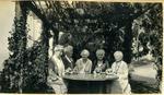 Five women in a garden
