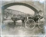 Man with horse and cart under Waianakarua Bridge