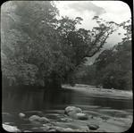 River scene, unidentified