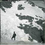 Glacier, Mount Talbot [?]
